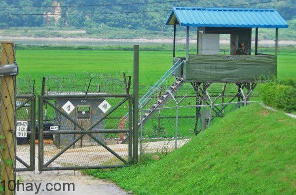 Panmunjeon DMZ