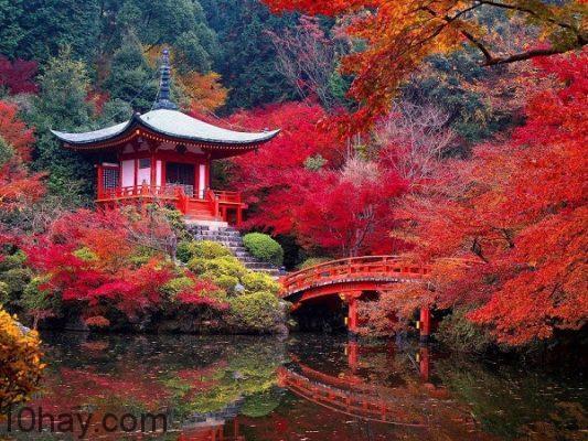 Kyoto (Japan-Nhật Bản)
