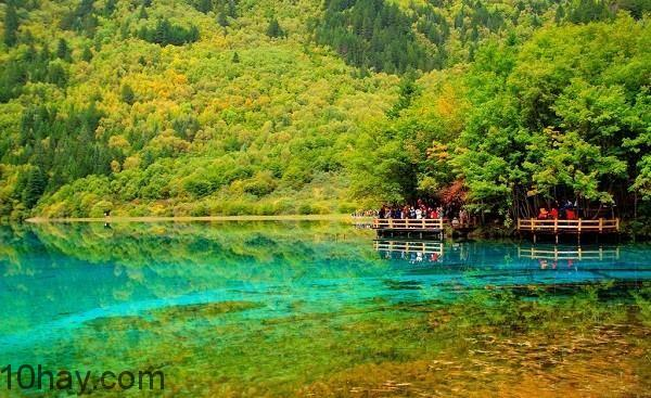 Rừng Jiuzhaigou