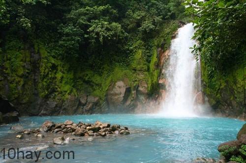 Rừng Monteverde
