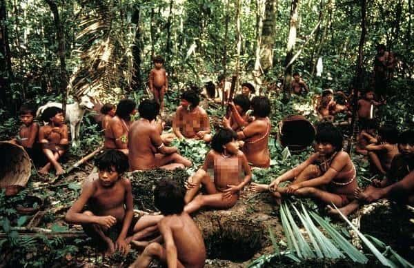 Bộ tộc Yanomami
