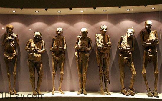 bảo tàng xác ướp rùng rơn