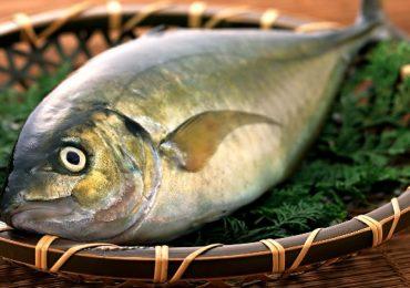 Làm sao thải kim loại ra khỏi cơ thể khi ăn hải sản nhiểm độc