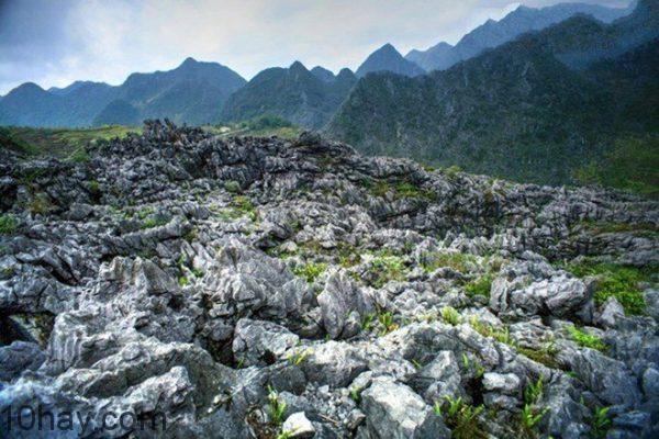 Công viên địa chất toàn cầu Cao nguyên đá Đồng Văn
