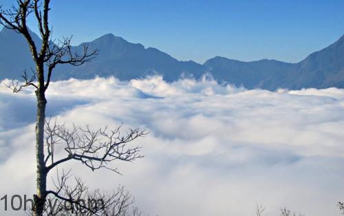 Biển mây giữa bầu trời Y Tý