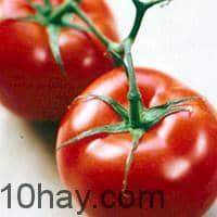 Cà chua - thực phẩm giúp tăng cường trí tuệ ngừa bệnh Alzheimer