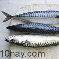 Dầu cá - thực phẩm giúp tăng cường trí tuệ, não, tim, khớp và nhiều bộ phận khác của cơ thể