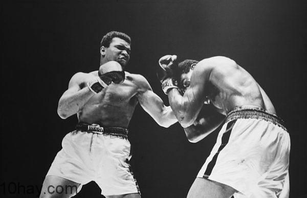 Muhammad Ali đánh bại Ernie Terrell, tại Nhà thi đấu Astrodome, Houston, Texas, Mỹ, vào ngày 6-2-1967