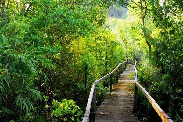 Vườn QG Nam Cát Tiên