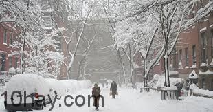 Bão tuyết New York năm 2006