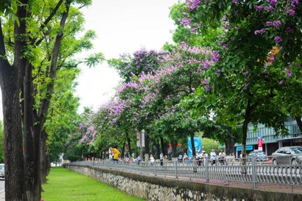 10 con đường đẹp nhất Hà Nội