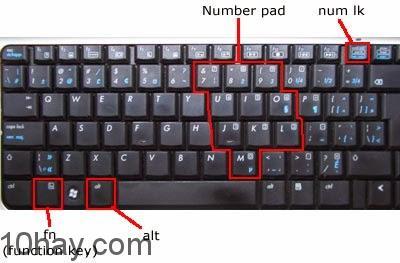 Khắc phục lỗi bàn phím laptop gõ chữ ra số