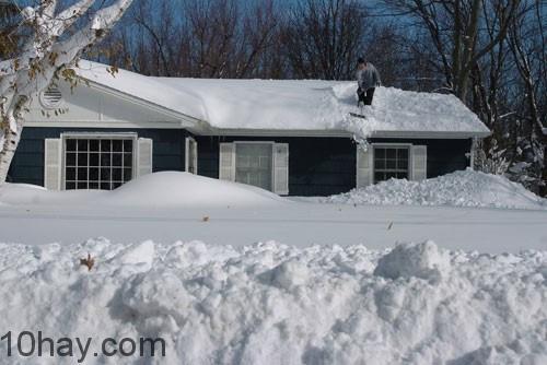 Trận bão tuyết 1888 - đông bắc Hoa Kỳ