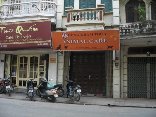 Phòng khám thú y Animal care