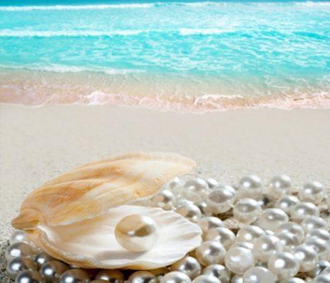 Ngọc trai là một nguyên liệu cao cấp được sử dụng làm đẹp