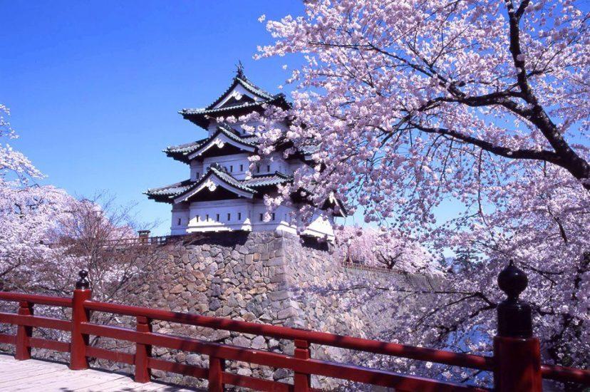 Du lịch Nhật Bản, trung tâm Nhật Ngữ