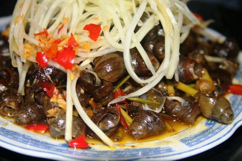 Oc hut Da Nang