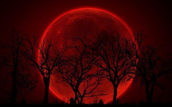 Trăng máu (Ảnh minh họa)