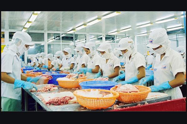 công ty chế biến xuất khẩu thủy sản