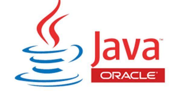 website cho dân lập trình