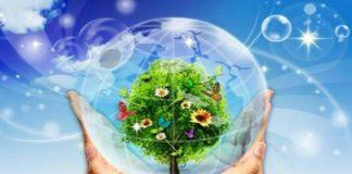 hành động phá hoại môi trường