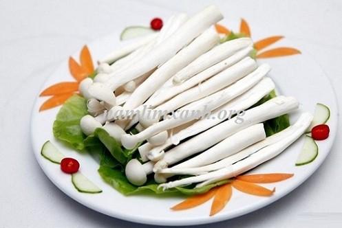 Nấm hải sản