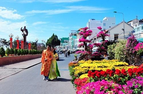 chợ hoa Tết lớn nhất miền Tây