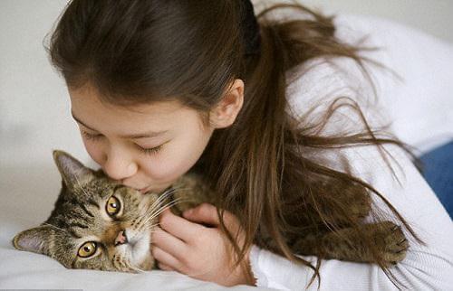 Mèo- thú cưng nuôi trong nhà nhiều nhất