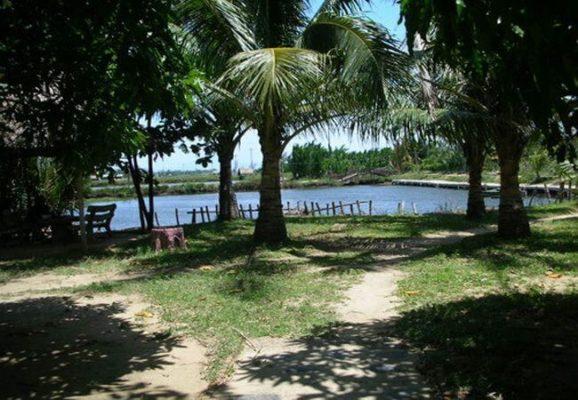 Đảo Thuận Tình