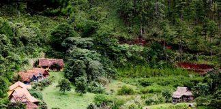 Top 10 địa điểm du lịch nổi tiếng ở Đà Lạt