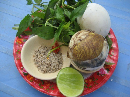Trứng vịt lộn được ăn kèm với rau răm chỉ có ở Việt Nam
