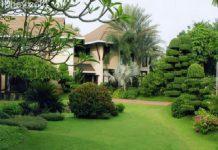 dịch vụ cung cấp cỏ nhân tạo