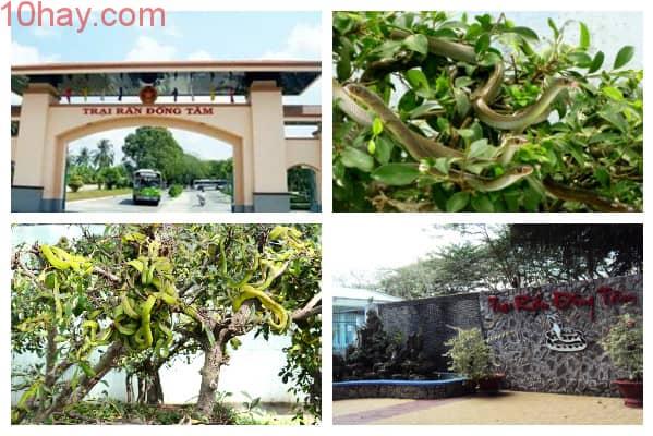 địa điểm du lịch nổi tiếng tại Tiền Giang
