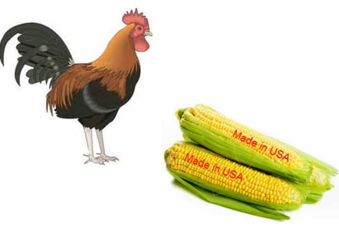 công ty thức ăn chăn nuôi Việt Nam