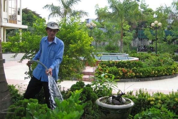 Top 10 công ty chăm sóc cây xanh uy tín tại TPHCM