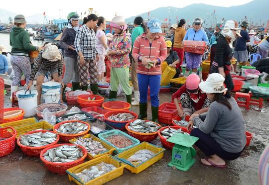 Chợ đầu mối hải sản lớn nhất Đà Nẵng