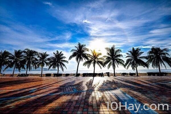 Top 10 công ty tổ chức tour du lịch giá rẻ tại Đà Nẵng