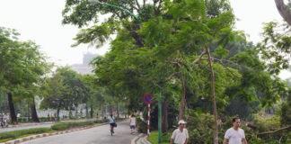 công ty môi trường tại Hà Nội
